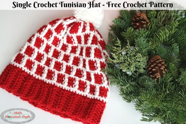 Single Crochet Tunisian Hat - Free Crochet Pattern