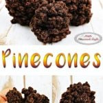 How to crochet a Pinecone - Free Crochet Pattern