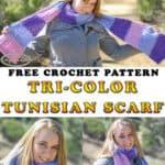 Tri-Color Tunisian Scarf - Free Crochet Pattern