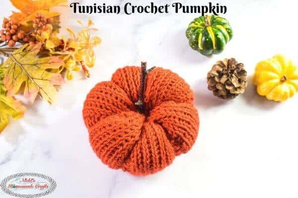 Tunisian Crochet Pumpkin Free Pattern
