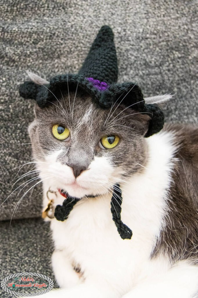 Lilly Girl Cat Crochet Witch Hat Pattern
