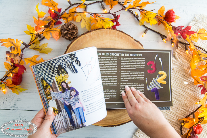 The Crochet Crowd Book Review - more patterns
